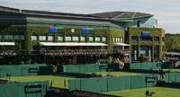 Wimbledon (m) previa