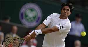 Wimbledon 2013 masculino